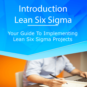 Introduction to The Lean Six Sigma Project Lean Six Sigma