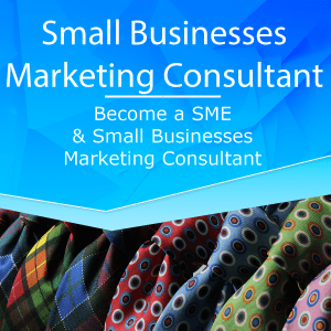 Become a SME and Small Businesses  Marketing Consultant Business