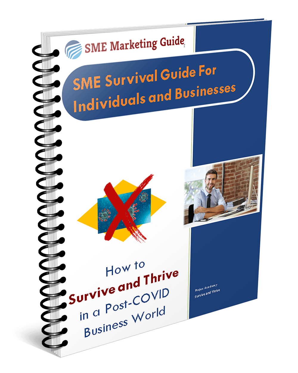 SME Survival Guide for Individuals and Businesses