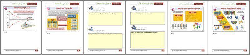 apmic handbook example - APM Project Fundamentals Primer