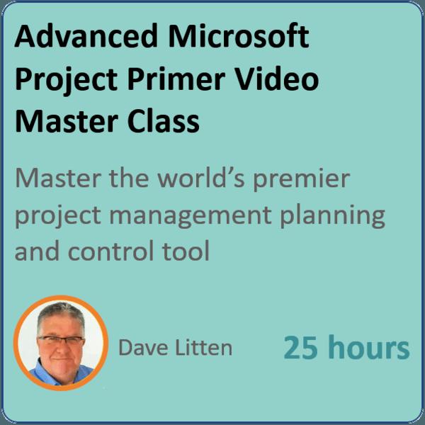 microsoft project 2010 600x600 - MS PROJECT Masterclass